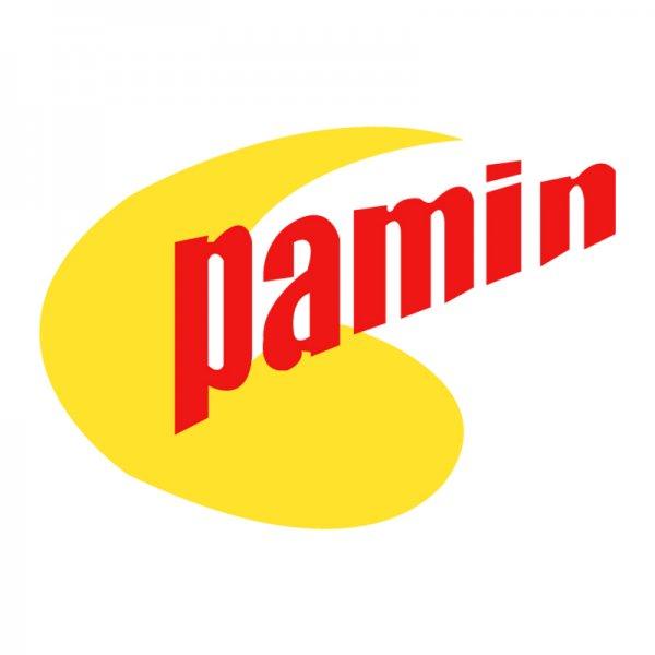 Pamin
